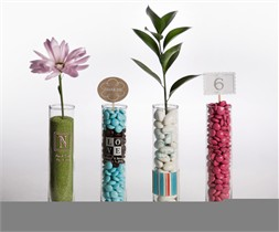 Vase Wedding Favors