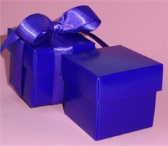 Violet Favor Boxes With Ribbon - Set of 10